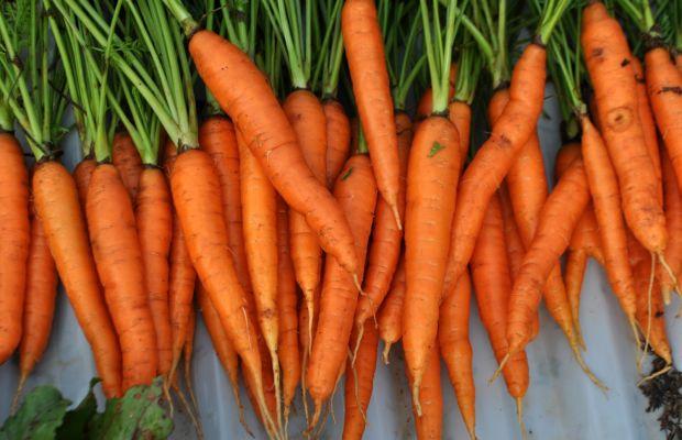 Carrot health benefits