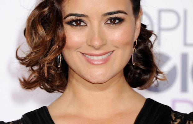 Cote de Pablo, People's Choice Awards 2015