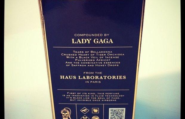 Lady Gaga Fame - back