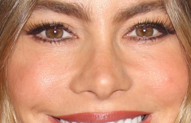 Sofia Vergara, American Cinematheque Awards 2015