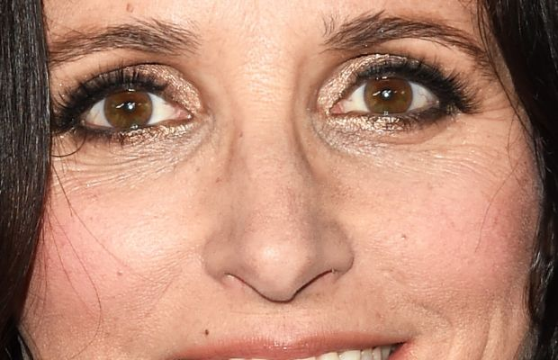 Julia Louis-Dreyfus, Critics' Choice Television Awards 2015