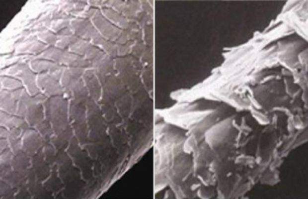 Closed cuticle vs open cuticle hair