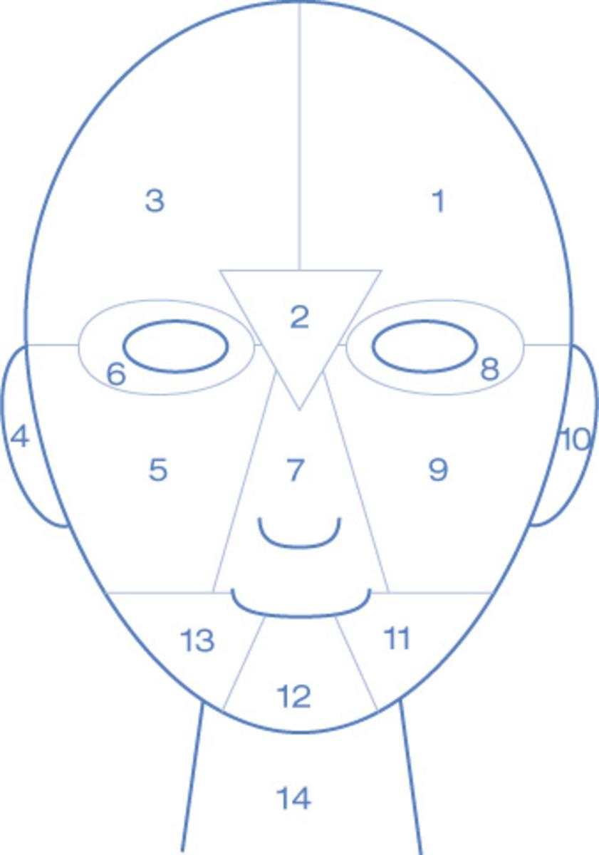 Dermalogica face map