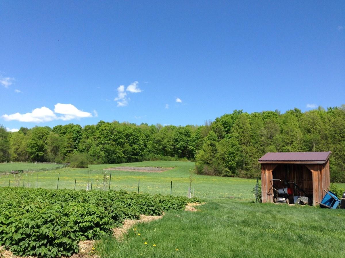 Tata Harper farm