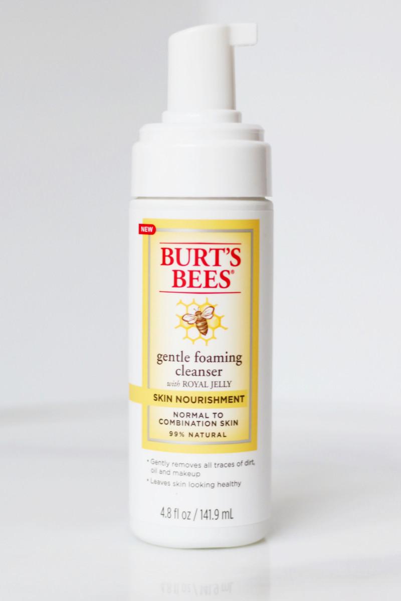 Burt's Bees Gentle Foaming Cleanser
