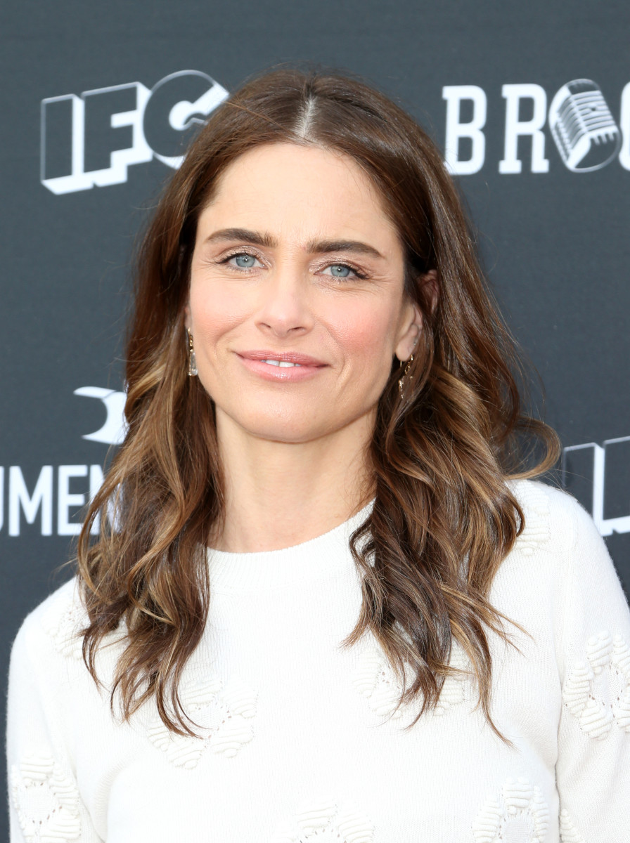 Amanda Peet, Brockmire and Documentary Now FYC event, 2017